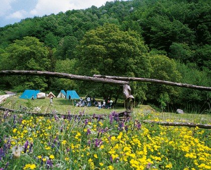 Camping-LES-ILLES
